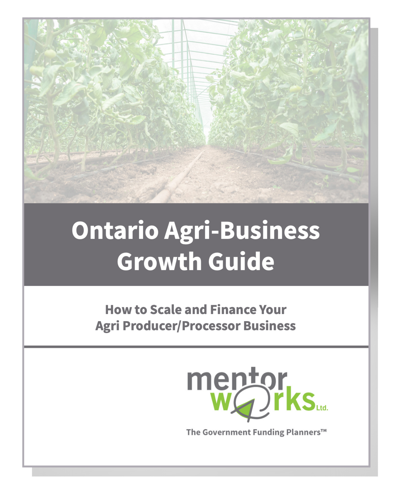 Ontario Agri Growth Business Guide Drop Shadow